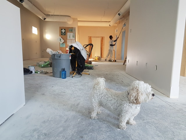 Painting service Oakland County Michigan